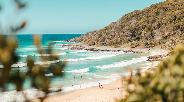 noosa-heads-accommodation-laws